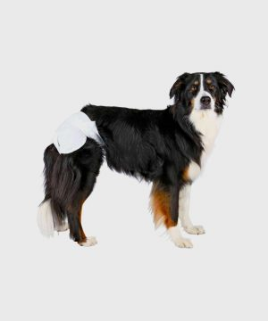 Trixie - Nappies for Female Dogs