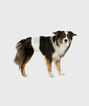 Trixie - Nappies for Male Dogs
