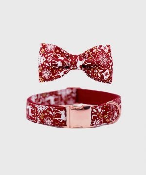 Reindeer Dash' Collar - Winter Collection