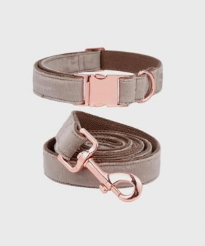 'Velveteen Dream' Collar in Taupe - Winter Collection