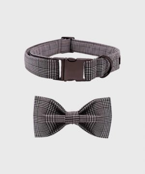 'The Entrepreneur' Collar - Winter Collection