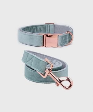 Velveteen Dream' Collar in Mint Magic - Winter Collection