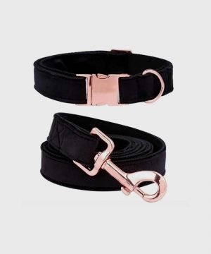 'Velveteen Dream' Collar in Obsidian - Winter Collection