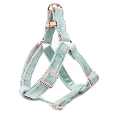Velveteen Dream Dog Harness in Mint Magic Winter Collection