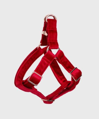 Velveteen Dream Dog Harness in Ruby Winter Collection