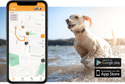 Pawfit 2 Waterproof GPS Pet Tracker and Activity Monitor